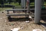 Lamezia, erbacce ovunque: parchi cittadini in preda al degrado