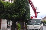Messina, ripresi i lavori sulle via alberate dopo il lockdown