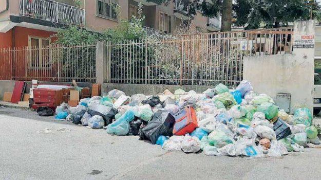 ambiente, rifiuti, vibo valentia, Catanzaro, Calabria, Cronaca