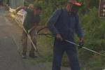 Monterosso Calabro, 20 volontari ripuliscono la strada provinciale 47