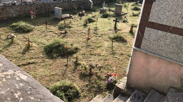 cimitero, dinami, Monsoreto, Catanzaro, Calabria, Cronaca