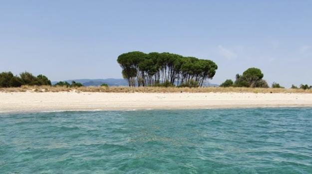 Costa dei Gigli, sellia marina, Catanzaro, Calabria, Economia