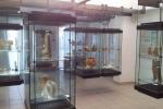 Museo di Crotone