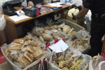 Produzione e vendita abusiva a S.Benedetto Ullano, sequestrati due quintali di alimenti in un panificio