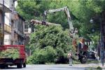 Nubifragio a Castrovillari, il Comune chiede lo stato di calamità