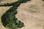 """Cia """"Subito legge su consumo di suolo, agricoltura sempre più a rischio"""""""