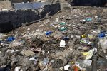 Inquinamento, animali maltrattati e rifiuti a Messina: interventi a Ganzirri, Torre Faro e Pistunina - Foto