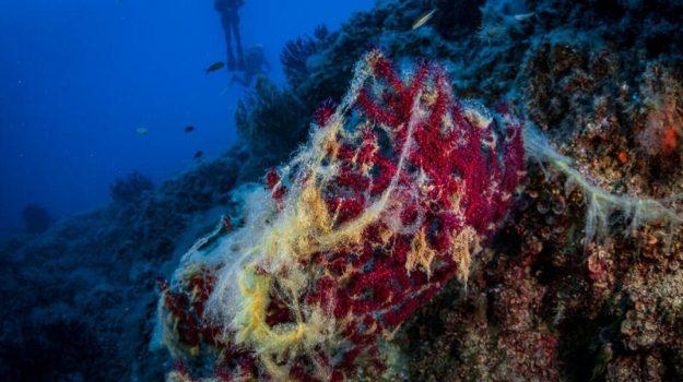 ecosistemi marini costieri, Scienza Tecnica