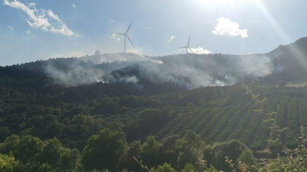 Calabria, Cronaca