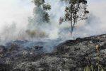 Incendio di fuoco in contrada San Francesco a Villapiana, in fumo dieci ettari di vegetazione