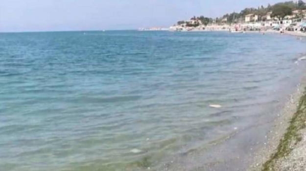 gizzeria, inquinamento, lamezia, Catanzaro, Calabria, Cronaca