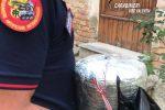 Ordigno esplosivo artigianale trovato a Piscopio, denunciato un uomo di 49 anni