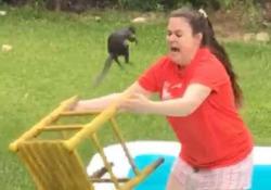Prova a «salvare» lo scoiattolo nella piscina gonfiabile. Ecco come finisce Il breve filmato girato in un giardino a Lumberton, in Texas, USA - CorriereTV