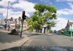 Una giornata fortunata: l'albero cade e quasi schiaccia due passanti a Londra L'albero ha quasi schiacciato due persone ad un incrocio di Londra - CorriereTV