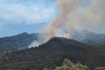 L'Aspromonte devastato dalle fiamme, a rischio un intero ecosistema