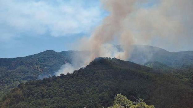 aspromonte, incendi, Reggio, Calabria, Cronaca
