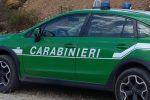 Reggio, incendiano un capannone dismesso: arrestati mandante ed esecutore