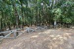 Filogaso, Calabria Verde mette a punto opere di ripristino nel bosco Fallà