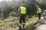 Il giallo di Caronia, 12esimo giorno di ricerche: 70 uomini in azione anche a Ferragosto