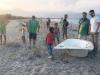 Sibari, la spiaggia restituisce frigoriferi e vasche da bagno: volontari all'opera
