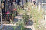 Cimitero di Locri nel degrado totale, erbacce e rifiuti invadono le tombe