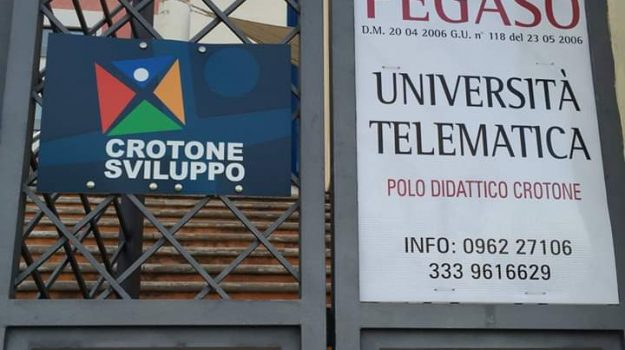 Crotone Sviluppo, Fabrizio Ambrosio, Catanzaro, Calabria, Politica