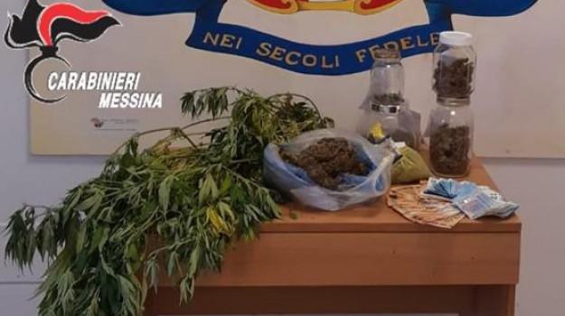marijuana, terme vigliatore, Messina, Sicilia, Cronaca