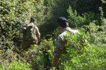 Caronia, al via il disboscamento del terreno dove sono stati trovati i resti di Gioele
