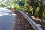 """Messina, forestali sulla statale 113 per la scerbatura. Fare Verde: """"Due anni senza interventi"""""""