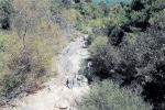 """Tra moria di pesci e siccità... Lo scandalo dell'acqua """"rubata"""" all'Alcantara - FOTO"""