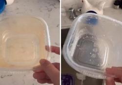«Il trucco»: ecco come pulire le vaschette di plastica in meno di un minuto Il video pubblicato su TikTok è cliccatissimo - CorriereTV