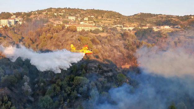 aieta, incendi, pollino, Cosenza, Calabria, Cronaca