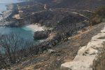 Brucia la Sicilia da Trapani a Messina: boschi a fuoco e famiglie evacuate