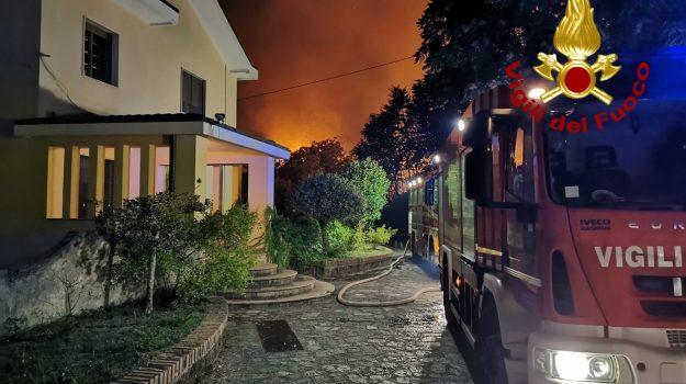 gagliano, incendio, Catanzaro, Calabria, Cronaca