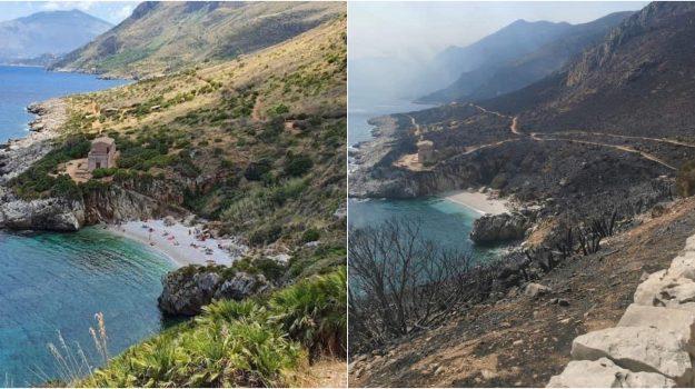 incendio, riserva zingaro, san vito lo capo, trapani, Sicilia, Cronaca