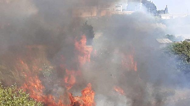 incendio, vegetazione, vigili del fuoco, Messina, Sicilia, Cronaca