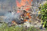 Tragico incidente aereo a Cassano, ultraleggero si schianta al suolo e prende fuoco: due morti - Foto