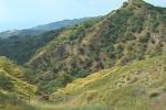 Messina, cooperativa crea fattoria per il recupero sociale a Larderia