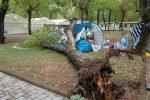 Tragedia in un campeggio, albero crolla su una tenda: morte due bimbe di 3 e 14 anni
