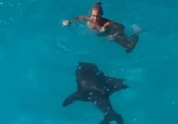 «Mamma, non spaventarti!» Lo squalo nuota sotto la donna, ignara del pericolo L'incontro ravvicinato con uno squalo di due metri e mezzo nelle acque delle Bahamas - CorriereTV