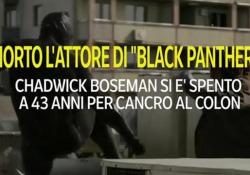 Morto Chadwick Boseman, l'attore di «Black Panther» Si è spento a 43 anni per un cancro al colon - Ansa