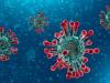 Nel Lazio 23 nuovi casi di Coronavirus e nessun decesso