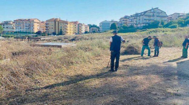 degrado, parco, Catanzaro, Calabria, Cronaca