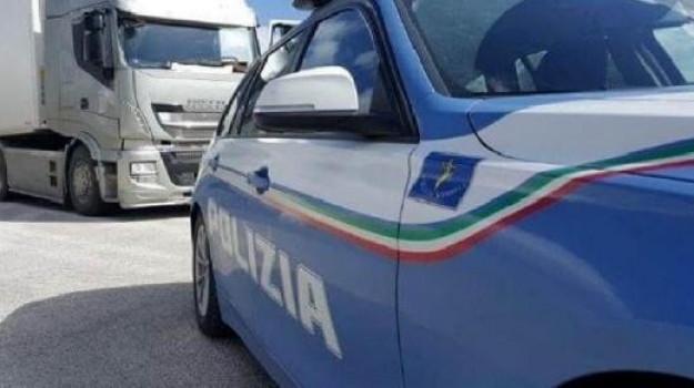 denuncia, guida in stato d'ebbrezza, vibo valentia, Catanzaro, Calabria, Cronaca