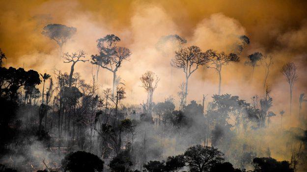 amazzonia, incendi, Sicilia, Mondo