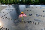 """11 settembre, Monterosso Calabro ricorda la sua """"cittadina"""" Ann Judge Campana"""