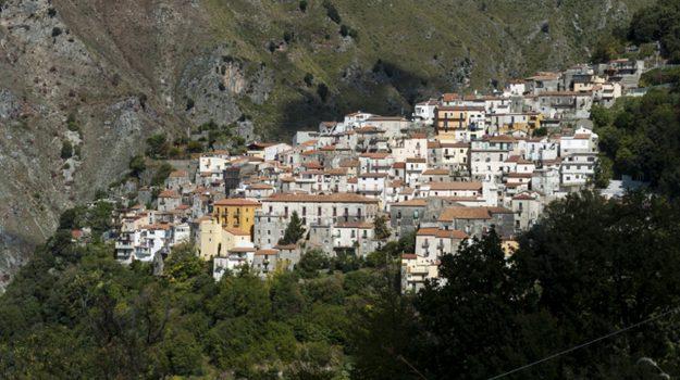 buonvicino, coronavirus, Cosenza, Calabria, Cronaca