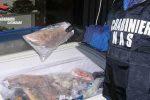 Lamezia, controlli nei market etnici di via Trento: elevate sanzioni per 3500 euro
