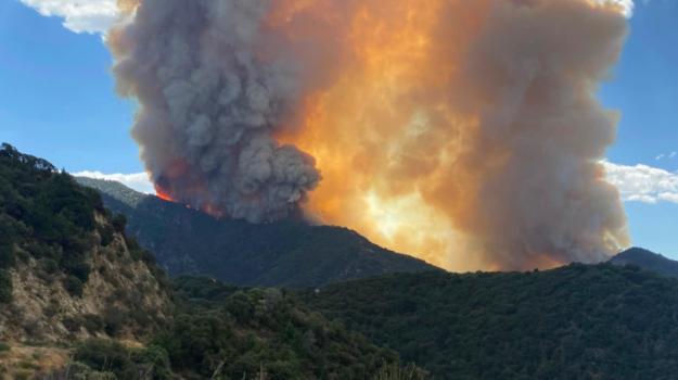 incendio, usa, Sicilia, Mondo