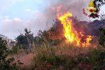 Incendi di macchia mediterranea nel Vibonese, 22 interventi dei vigili del fuoco